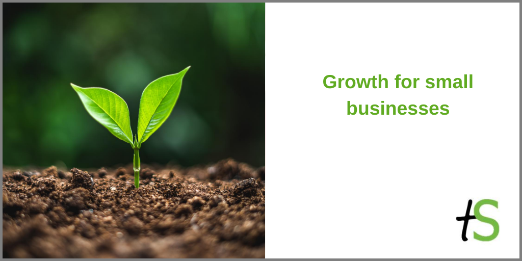 Growth for small businesses banner with green shoot in soil