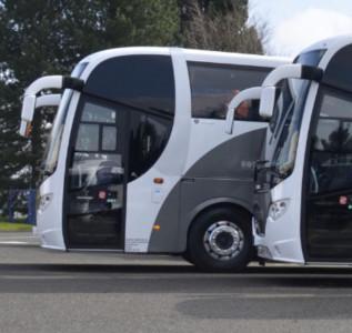 Rotala buses